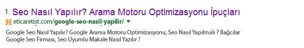 google-seo-nasil-yapilir-arama-sonucu