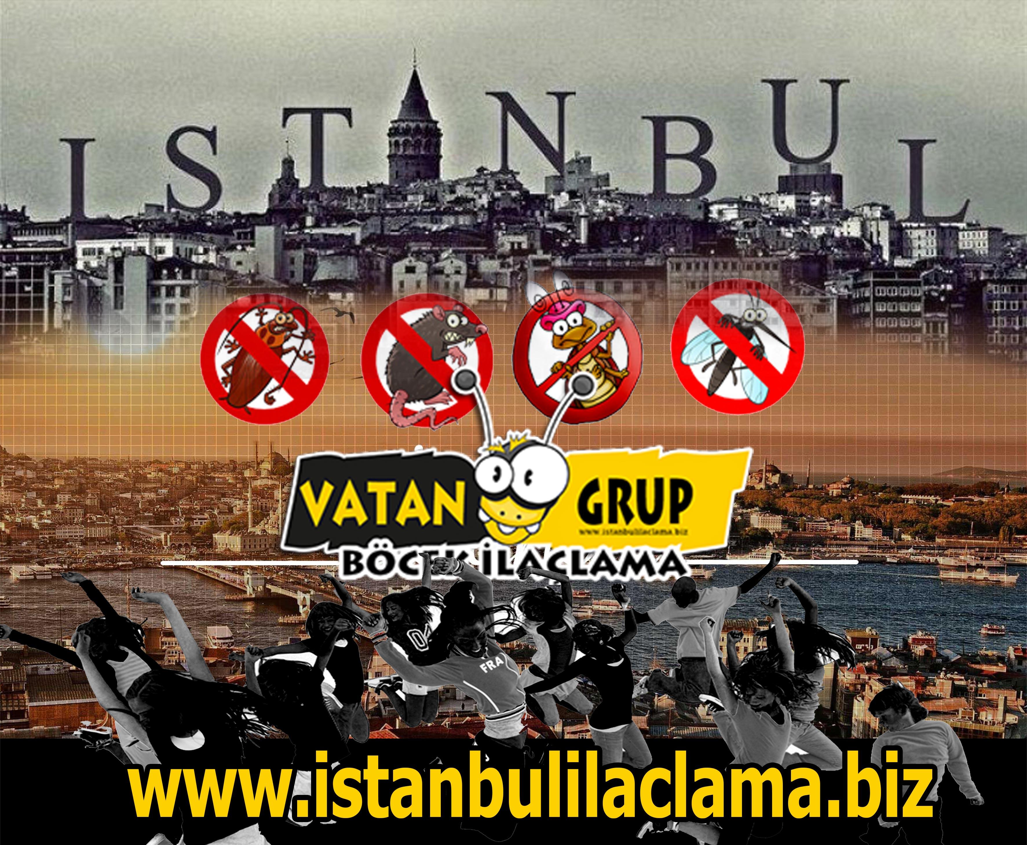 istanbul-ilaclama